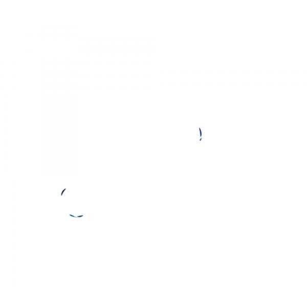 Victorinox SwissLite Sapphire 5